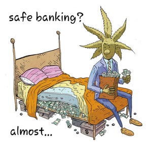 The Saga of the Safe Banking Act