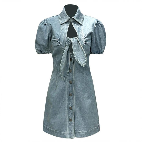 Ivy Denim Dress