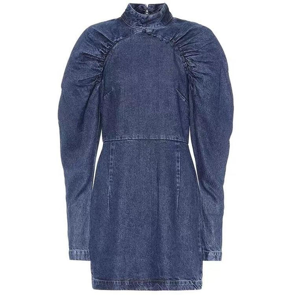 Ann Denim Dress