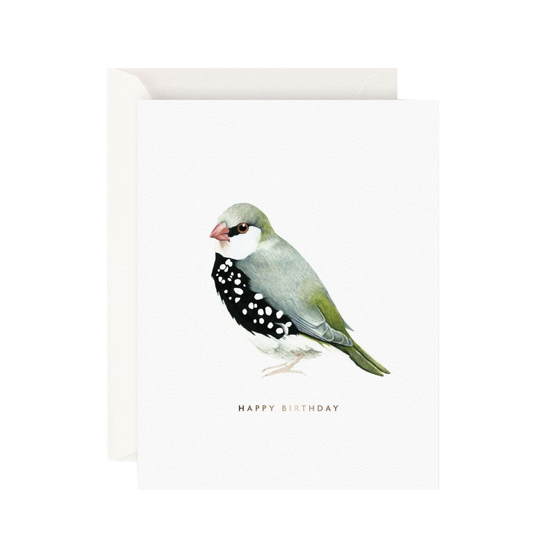 Father Rabbit Stationery Card Happy Birthday Bird