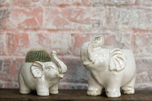 Load image into Gallery viewer, Elephant Planter- Large