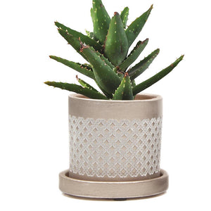 Gold Lattice Planter