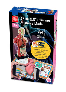 "ELENCO - Edu-Toys - 10"" Human Anatomy Model AR Edition - EDU41006AR 