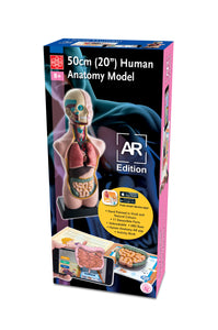 "Edu-Toys - 20"" Human Anatomy Model AR Version - EDU41007AR 