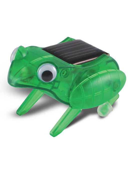 OWI Robot - OWI-MSK672 - Happy Hopping Frog | STEM Toy Store | STEMToyStore.com