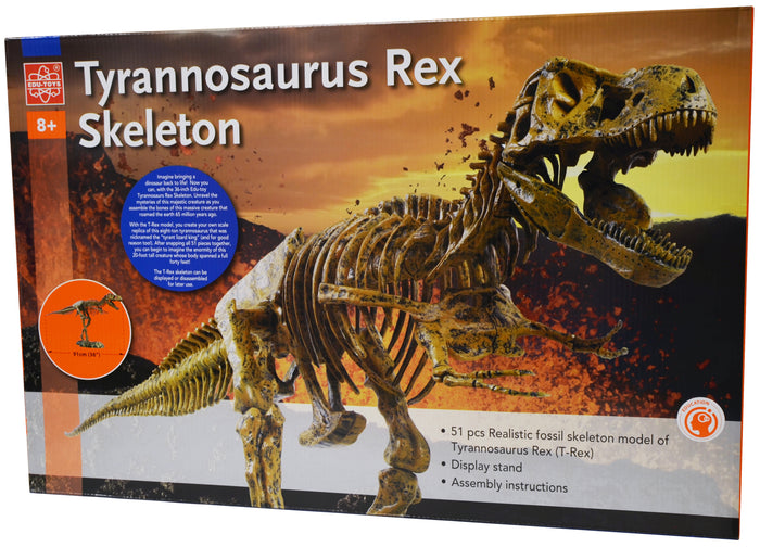 Elenco - Edu-Toys - Edu-Science - T-Rex Skeleton - EDU37329 | STEM Toy Store | STEMToyStore.com