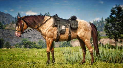 Horses of Red Dead 2