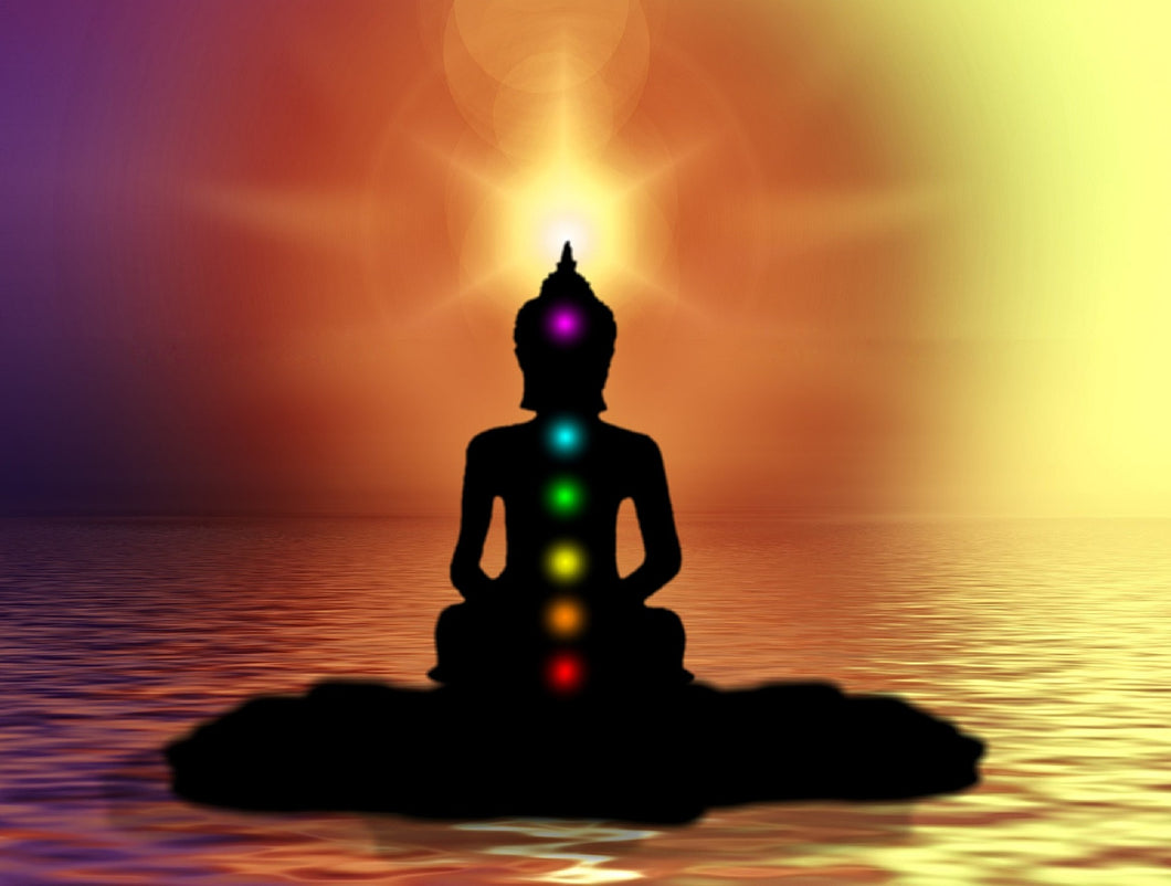 The Courses - Chakra Reading