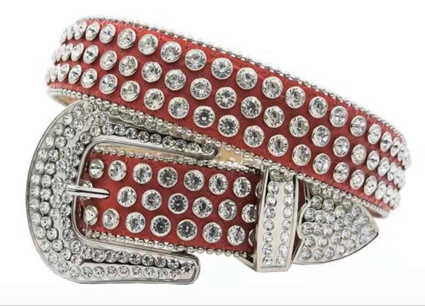 DNA Belts-All Silver (Red)