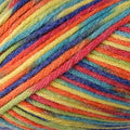 Comfort Worsted 9813 Multi Brights - Berroco