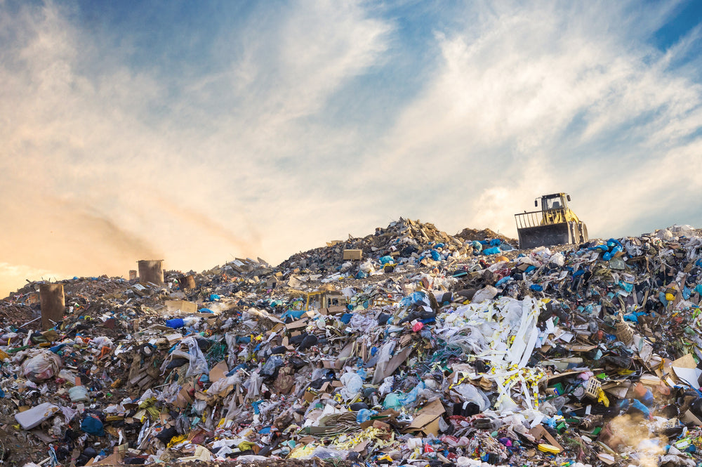Social and Environmental Justice: Recycling and Waste Management (2/4)