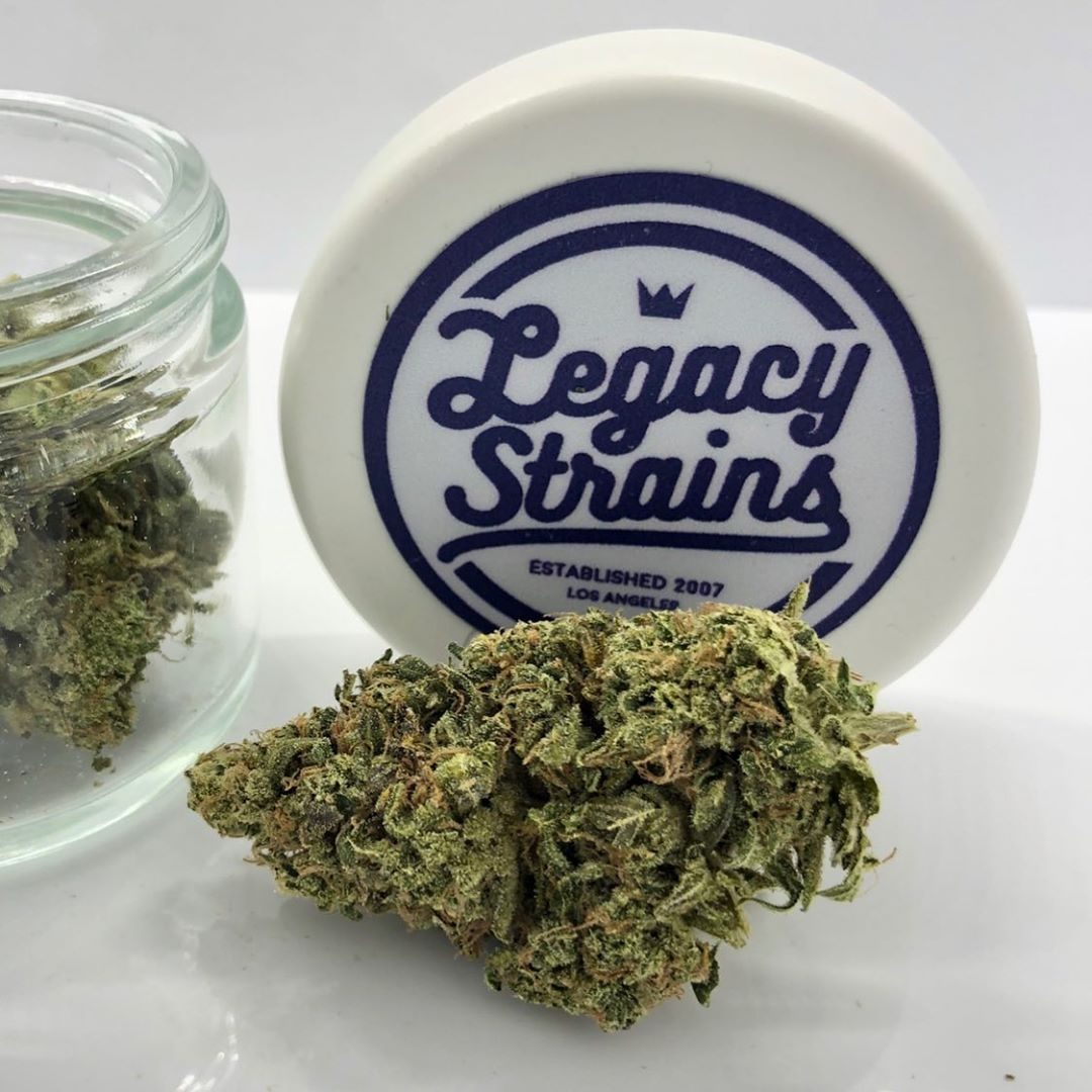 sustainable packaging using ocean recycled plastic, perfect solutions for customized cannabis packaging.