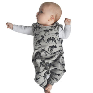 Boys Infant Dinosaur pattern romper
