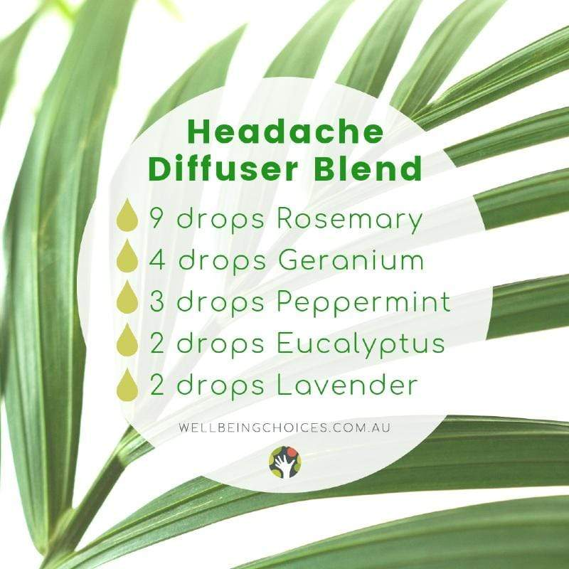 Headache Diffuser Blend - Droplets of Wellbeing