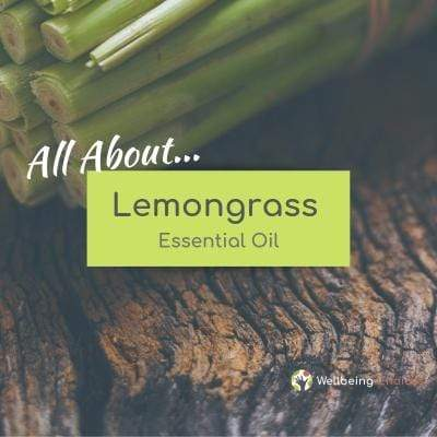 Lemongrass Essential Oil 101 Wellbeing Choices