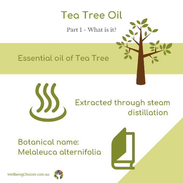 Tea Tree Oil part 1 What is it?