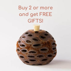 The more Banksia pod diffusers you buy, the  more gifts you get!