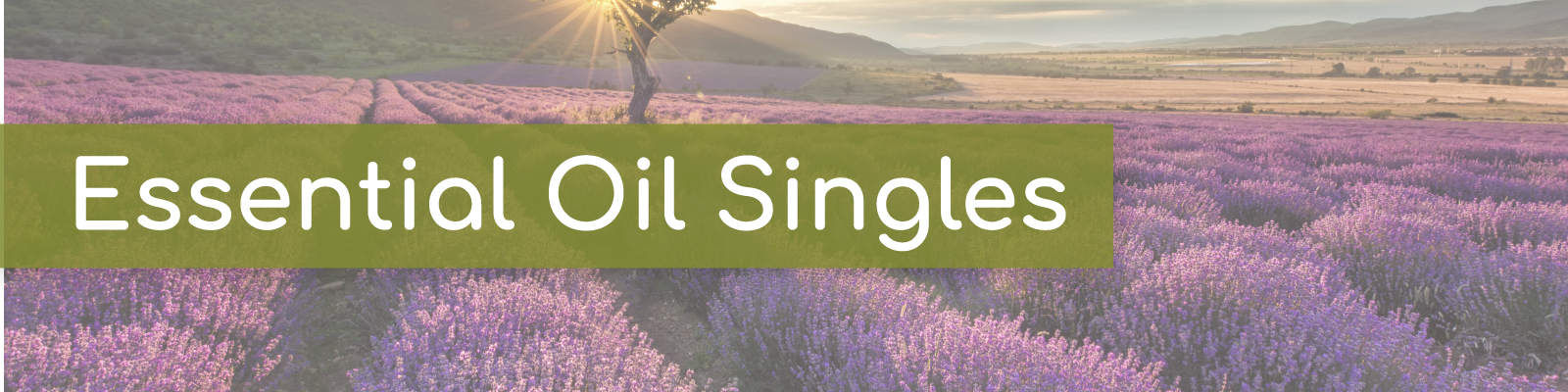 Essential oil singles collection