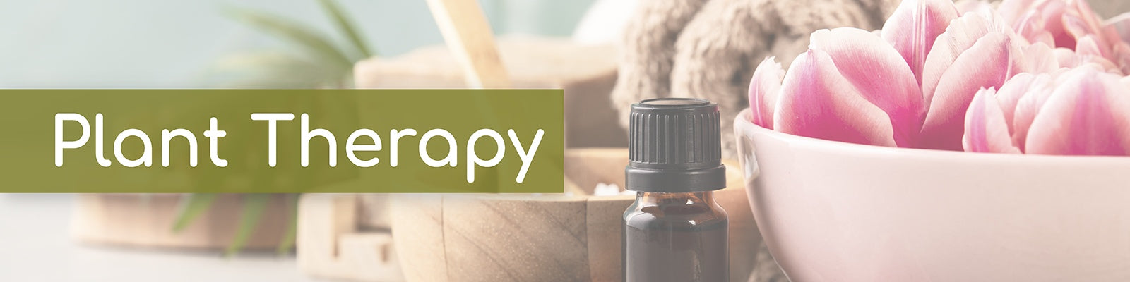 Plant Therapy Essential Oils Collection