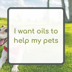 I want oils to help my pets