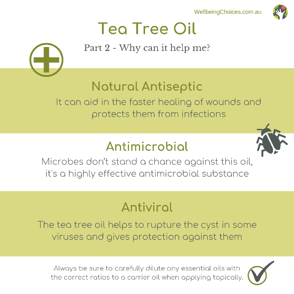 Tea Tree oil part 2