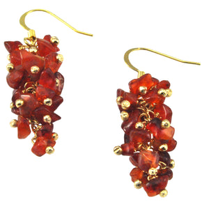 SE472AG Grape Cluster Earrings with Agate