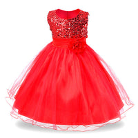 Formal Lace Top Sleeveless Dress 3-14 year