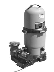 Waterway Plastics 806105502698 Cartridge Filter & 2 Hp 2 Speed Pump System