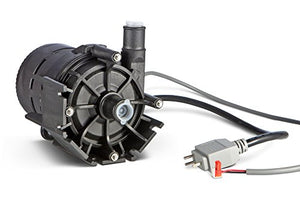 Dimension One Spas Hot Tub E10 Circulation Pump 230 volts with Built-in Flow Switch, 01512-320E