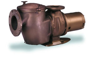 Pentair 014883 CHKL-150 C-Series Commercial Bronze Pump, 15 Horsepower, High Head Three-Phase 380/415-Volt 60 Hertz