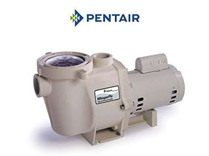 Pentair 075138 Single Phase Energy Efficient Power End Sub-Assembly Replacement WhisperFlo Pool and Spa Pump