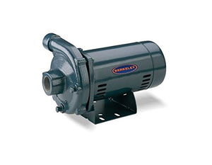 Pentair S39498 CP1-1/4PS Centrifugal Pump, 2 HP, 115/230-Volt