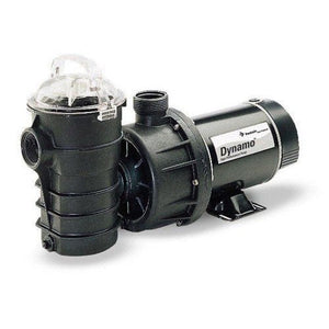 Pentair DYNII-NI-1-1/2 Dynamo Single Speed Aboveground Pool Pump with Cord, Base and On or Off Switch, 1-1/2 HP