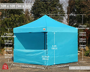 ABCCANOPY (18+ colors) Commercial 10x10 Instant Canopy Craft Display Tent with Wheeled Carry Bag and Full Walls, Bonus 4x Weight Bag and 10ft Screen Wall & 10ft Half Wall (sky blue)