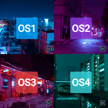 Load image into Gallery viewer, Osore Sararīman Lightroom Presets