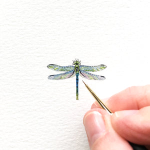 Dainty dragonfly - SOLD