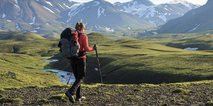 Choose the Perfect Hiking Stick