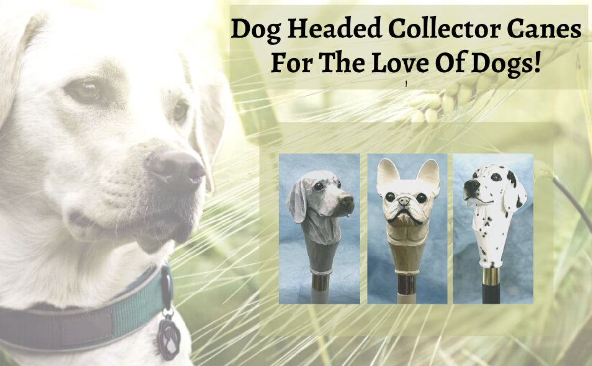Dog Headed Collector Canes for the Love of Dogs