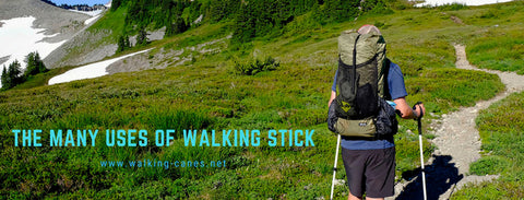 uses of walking stick