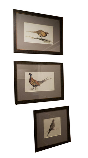Birds of Prey - Grand Expressions Gallery and Home Store
