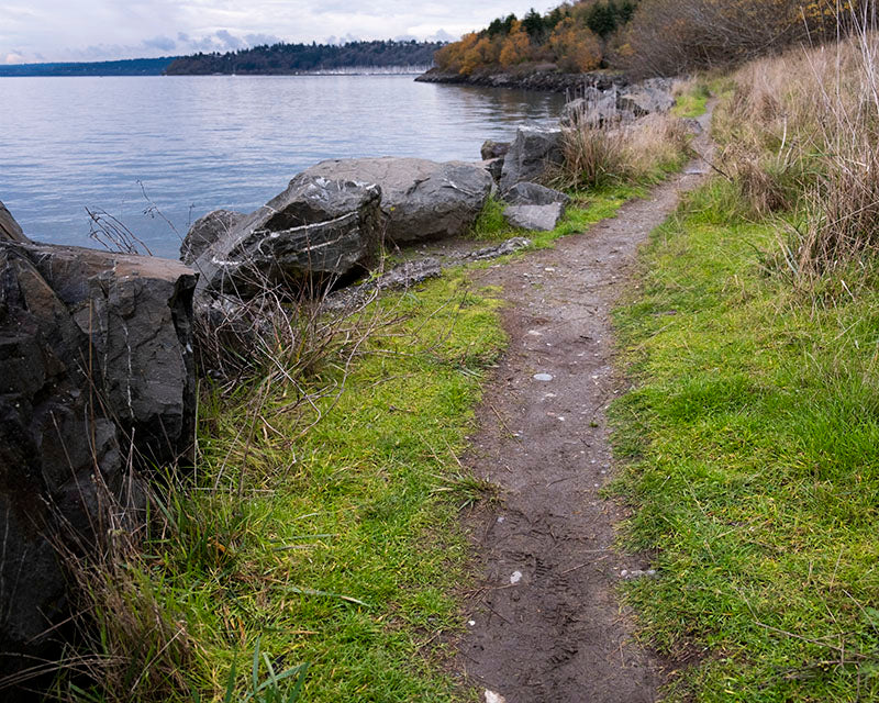 Discovery Park - North Beach Trail