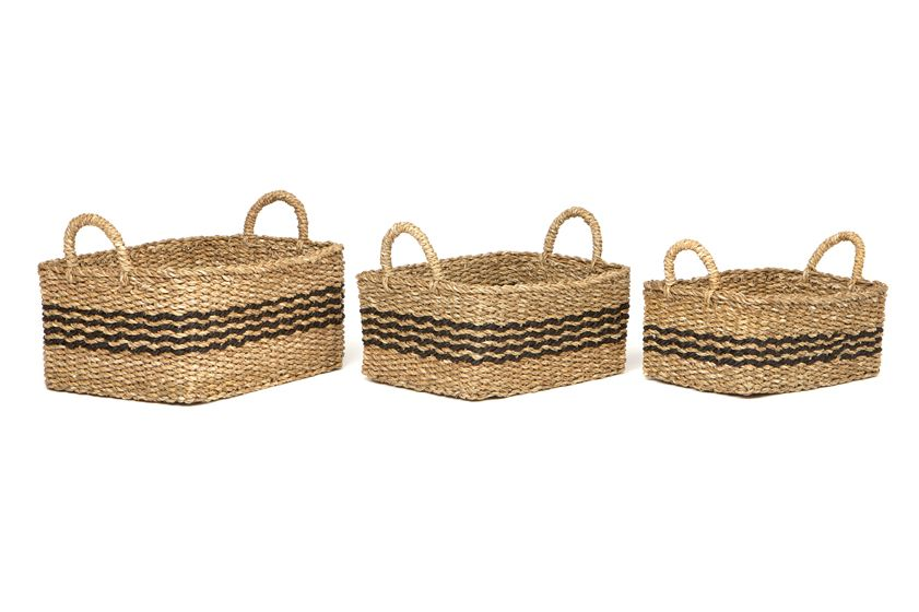 PALASH - SET OF 3