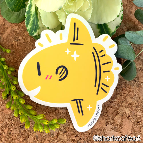 Mola Mola Sunfish CLEAR VINYL Sticker