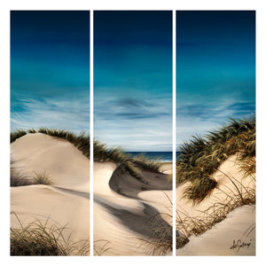 Sanddune Shadows - Canvas Triptych Print