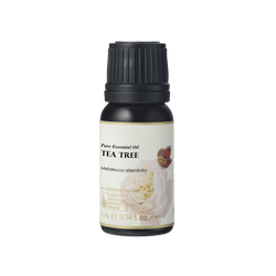 Tea Tree Essential Oil 100% Certified Organic 3% Essential Oil Ausganica - OSMEN OUTDOOR FURNITURE-Sydney Metro Free Delivery