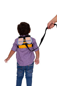 Bee Safety Harness