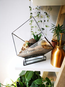 Angled Cube Glass with tray