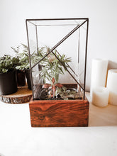 Load image into Gallery viewer, Ukhuni Terrarium Range