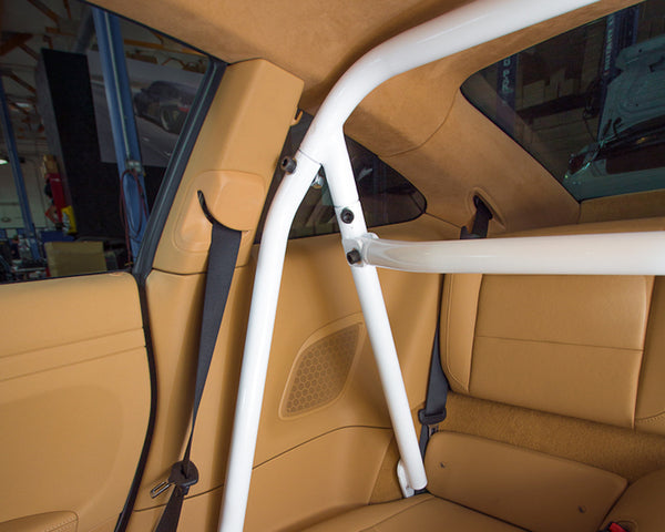 Agency Power Bolt-In Roll Bar Harness Bar Porsche 991 Carrera | Turbo 13-15 (*Specify Color*) (AP-991-500)
