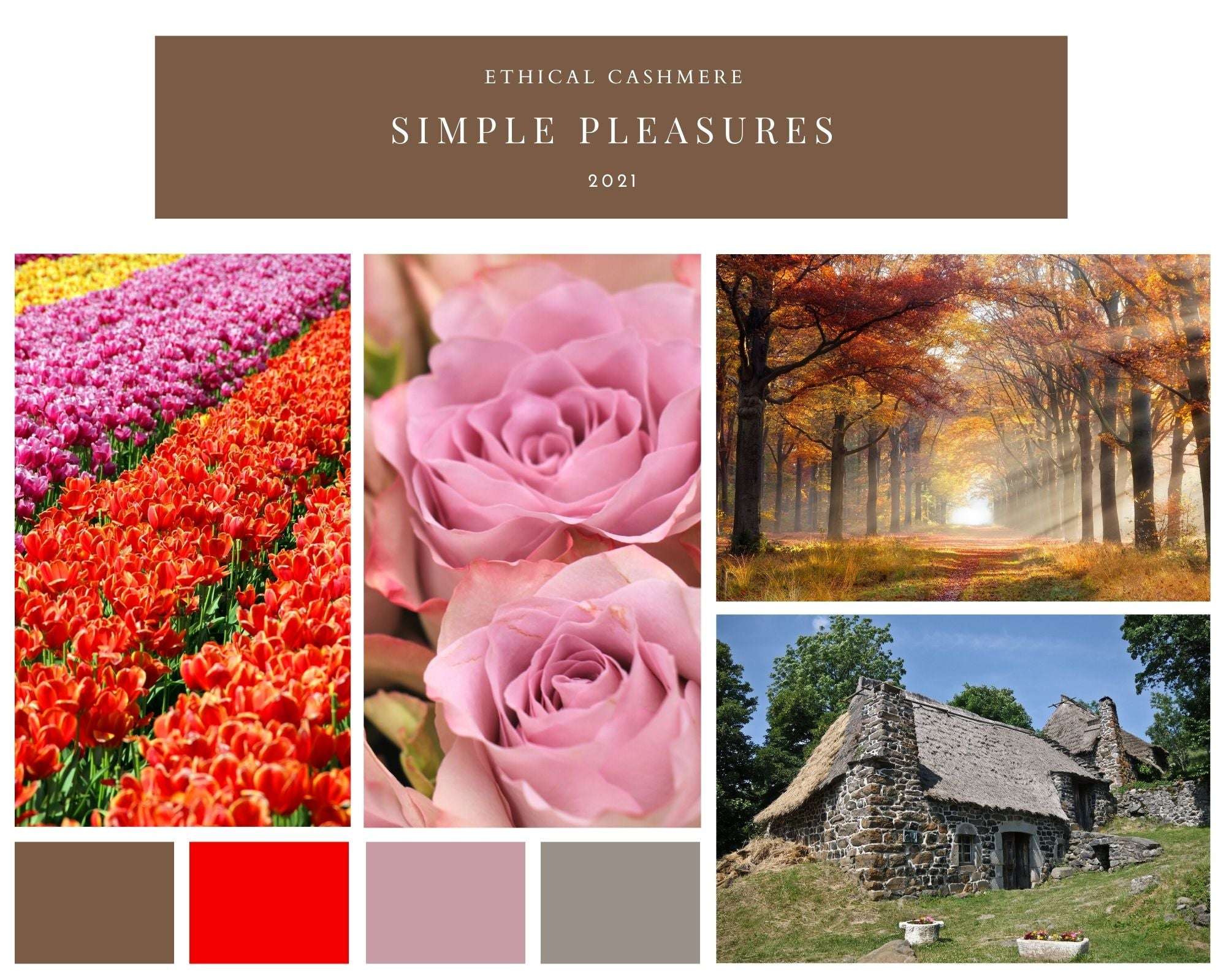 Collage of images depicting purple and vermillion rows of flowers, close-up of lilac antique roses, autumn forest, and slate grey stone cottage, providing colour inspiration for Ethical Cashmere's 2021 Simple Pleasures fall season.